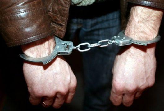 В Криулянском районе раскрыли серию краж: задержаны несколько членов ОПГ (ВИДЕО)