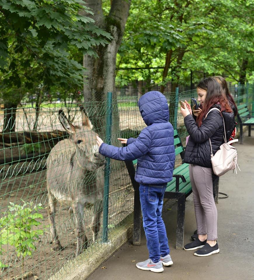 Кишиневский зоопарк возобновил работу (ФОТО)