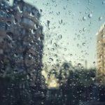 """Дожди, грозы, порывистый ветер: объявлен """"жёлтый код"""" метеоопасности"""