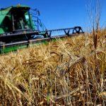 Россия безвозмездно предоставит пострадавшим от засухи молдавским фермерам дизтопливо