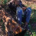 """Попытка номер 5: молдаванин в очередной раз пытался """"зайцем"""" проскочить границу ради встречи с возлюбленной"""