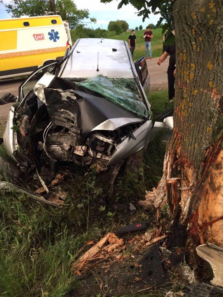 Смертельное ДТП в Единцах: водитель врезался в дерево