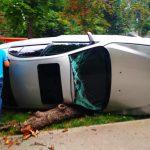 ДТП на Ботанике: автомобиль снёс дерево и перевернулся (ФОТО)