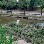 Чебан: Русло реки Бык будет очищено в максимально сжатые сроки