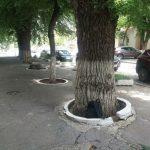 Тревога в Кишиневе: в центре города обнаружен брошенный рюкзак