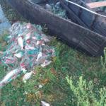 Четверо молдаван попались на незаконной рыбалке в заповеднике