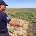 Спасатели продолжают укреплять дамбы вдоль Днестра и Прута (ФОТО)