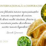 Зинаида Гречаный поздравила с Международным днём кооперации работников отрасли