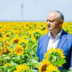 Додон рассказал фермерам в Тараклии о принятых правительством решениях в поддержку аграриев (ФОТО, ВИДЕО)