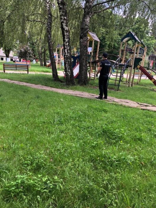 """В полиции рассказали о выявленных в парке """"Орхейлэнд"""" нарушениях (ВИДЕО)"""