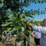 Додон рассказал фермерам о начале реализации государственной программы финансовой поддержки сельского хозяйства (ФОТО, ВИДЕО)