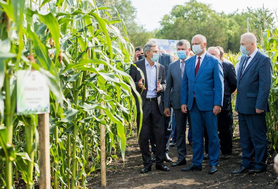Президент совершает визит в Криулянский район (ФОТО, ВИДЕО)