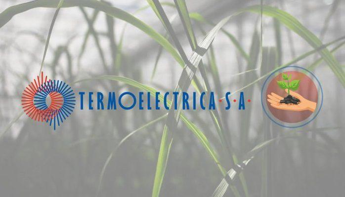 """""""Термоэлектрика"""" будет производить теплоэнергию из биомассы"""