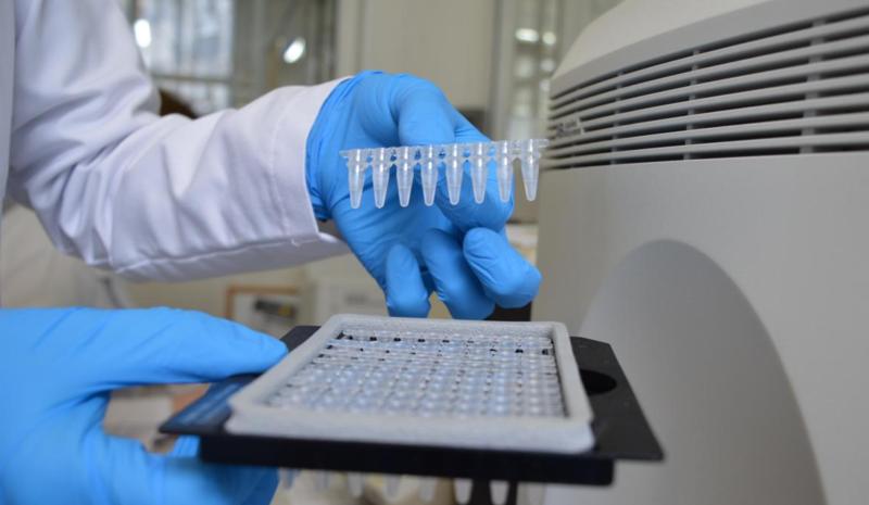 Подтверждено 258 новых случаев коронавируса