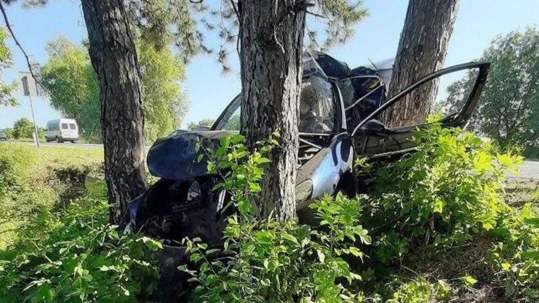 """ДТП в Рышканах: автомобиль """"припарковался"""" в дерево (ФОТО)"""