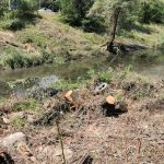 Чистка русла реки Бык продолжается: начались работы на следующем участке