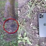 Четверо на одного: жителя Кишинёва обокрали на 23 тысячи леев (ВИДЕО)