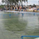 Решено: с понедельника в Молдове вновь заработают бассейны