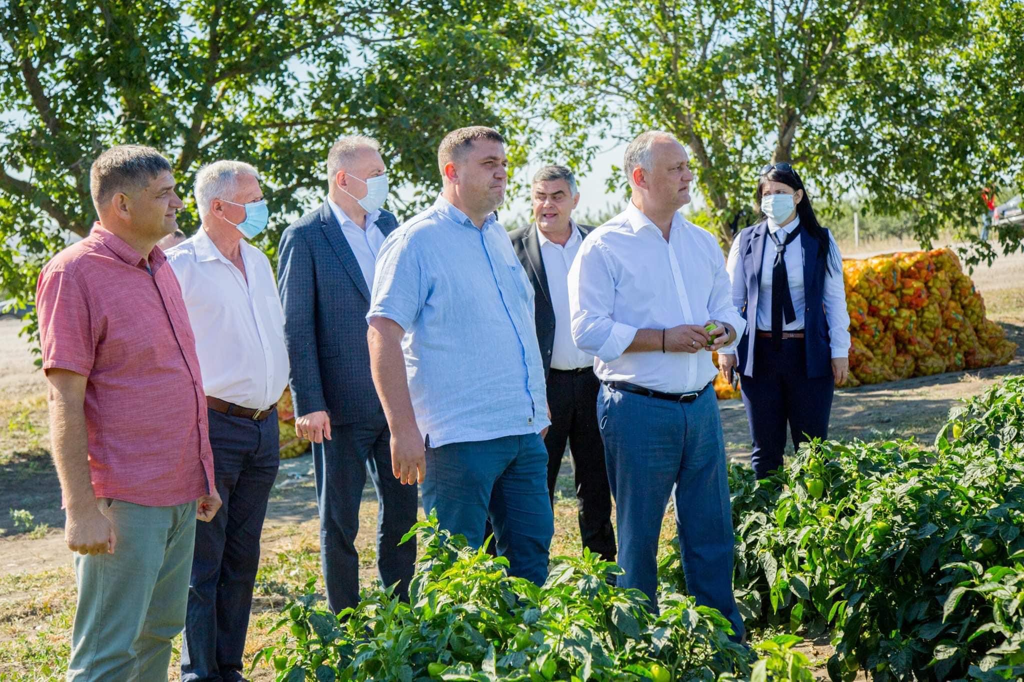 Президент посетил два сельскохозяйственных предприятия в Теленештах (ФОТО)