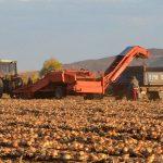 Фермеры прекращают протесты и возвращаются к работе