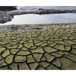 """""""Жёлтый код"""" гидрологической засухи объявлен на большей части страны"""