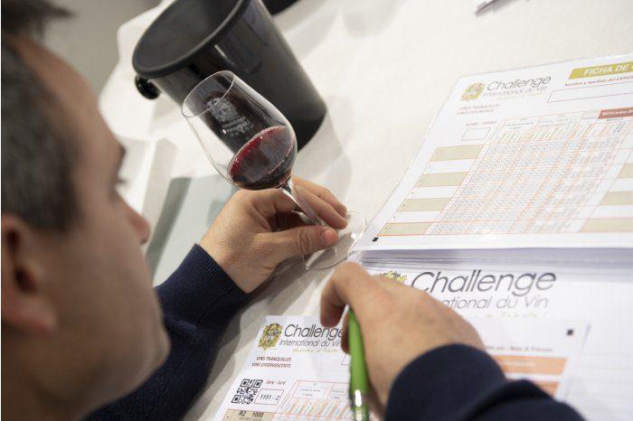 Молдавские вина завоевали 47 медалей на конкурсе во Франции