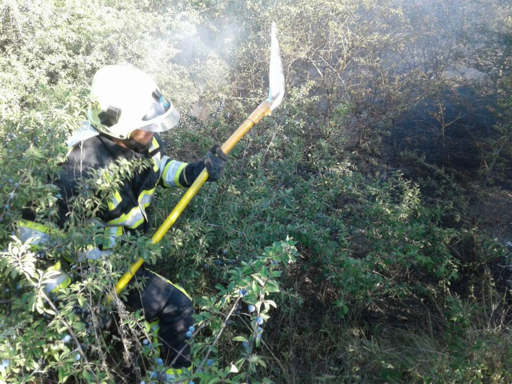 За сутки пожарным удалось устранить более 40 очагов возгорания (ФОТО)