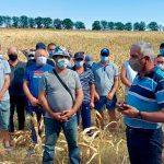 Чебан о возможном протесте фермеров в Кишиневе: Город не справится с такой масштабной акцией
