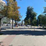 Чебан предупредил: автолюбителей, паркующихся в парках и скверах столицы, ждут штрафы
