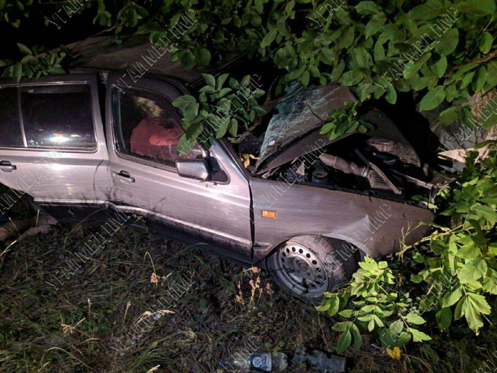 В аварии по вине пьяного водителя пострадали два человека