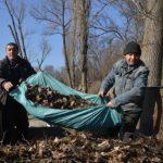 Муниципалитет закупит 5 прицепов для перевозки листьев