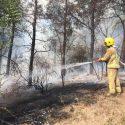 Более 50 пожаров произошло в стране за последние сутки