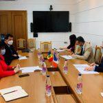 Думбрэвяну провела встречу с послом Франции