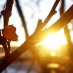 Синоптики обещают резкое похолодание в ближайшие дни