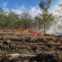 Сильный пожар в Копчаке: полиция предполагает поджог (ВИДЕО)
