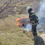 Почти полсотни очагов возгорания сухой растительности потушили пожарные за сутки