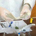 Хранил марихуану в диване: нарушителю грозит наказание