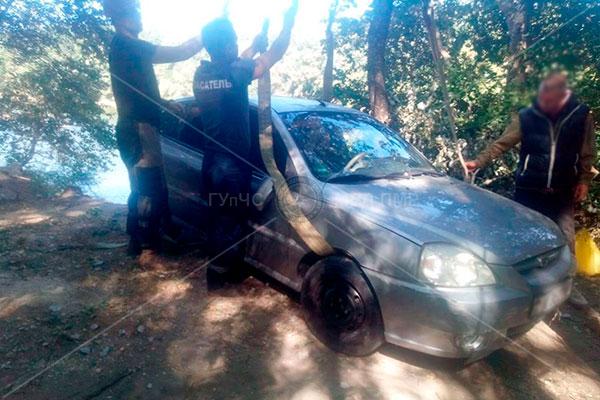 Необычная спецоперация: спасатели вытащили укатившийся в овраг автомобиль