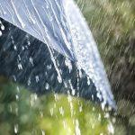 Смена погоды: в конце недели ожидаются дожди