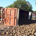 В Рышканах перевернулся грузовик со свеклой