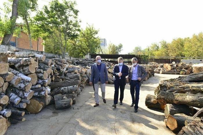 По меньшей мере 500 малообеспеченных семей бесплатно получат дрова от примарии Кишинёва (ВИДЕО)