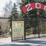 Число посетителей столичного зоопарка резко увеличилось