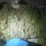 Обыски в Кагуле: найдено 12 кг наркотиков стоимостью более 1 млн леев