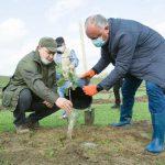 Додон призвал оппонентов выйти из Facebook на улицу, чтобы присоединиться к кампании по озеленению Родины (ФОТО)