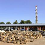 Начинается раздача дров малообеспеченным семьям из Кишинёва