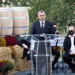 Ион Кику принял участие в открытии XIX Национального дня вина