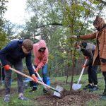 На Рышкановке высадили около 2 тысяч деревьев (ФОТО)