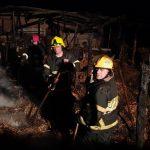 Пожар в Кагульском районе: вспыхнул сарай с сеном