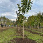 Чебан принял участие в мероприятиях по озеленению столицы (ФОТО)