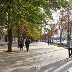 Ремонт тротуаров на Московском проспекте продолжается (ФОТО)